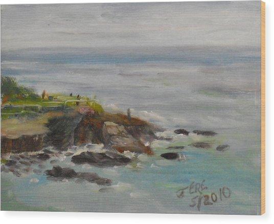 La Jolla Cove 053 Wood Print