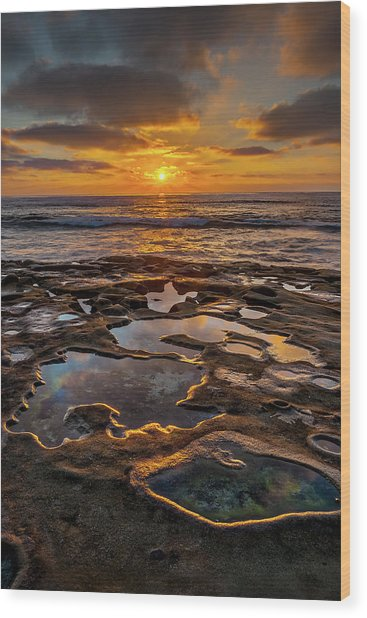 La Jolla Tidepools Wood Print