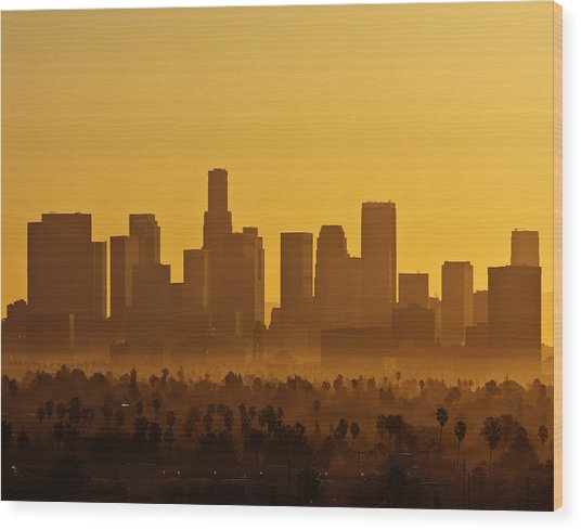 L. A. Morning Wood Print
