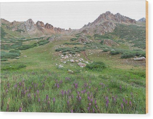 La Plata Peak Wood Print