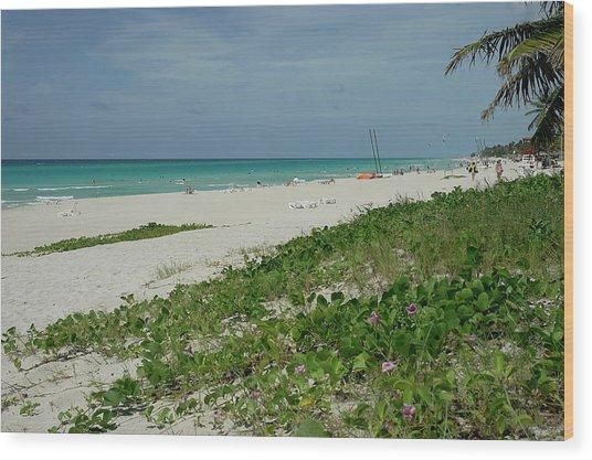 La Playa Mas Hermosa Wood Print