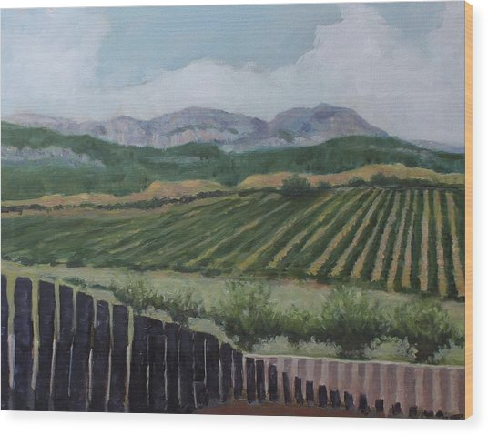 La Rioja Valley Wood Print