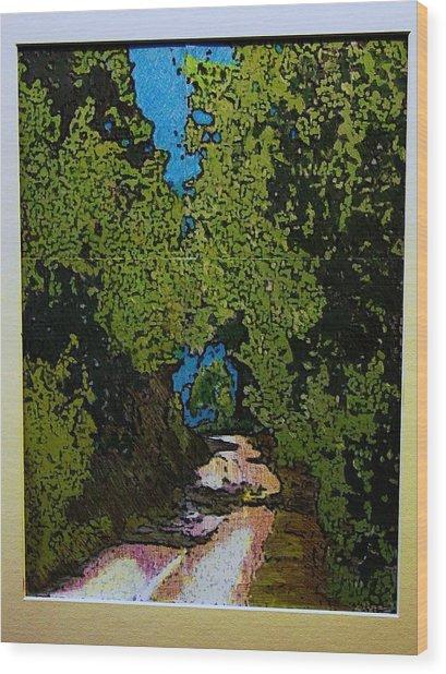 La Romita Road Wood Print by Tom Herrin