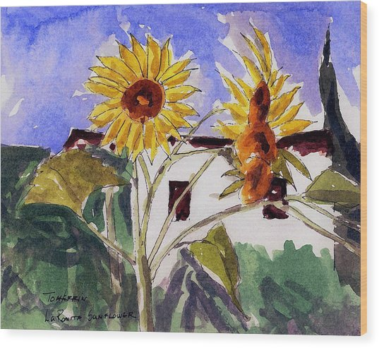 La Romita Sunflowers Wood Print by Tom Herrin