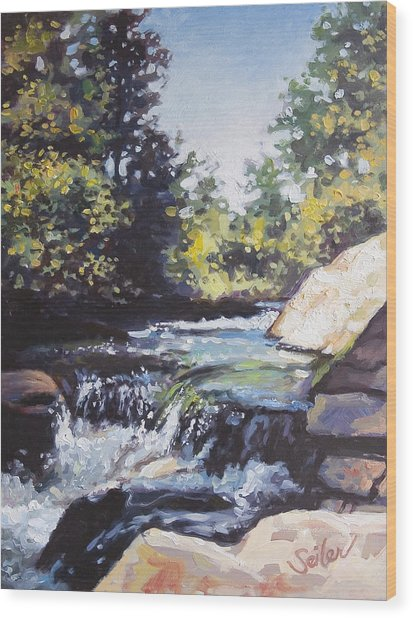 La Salle Falls Wood Print by Larry Seiler