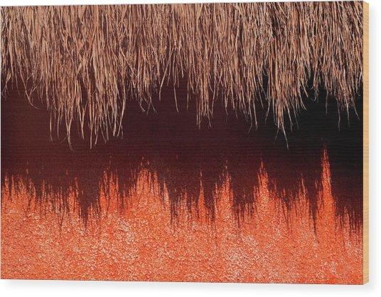 La Sombra Wood Print