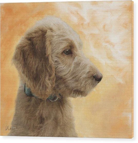 Labradoodle Puppy Wood Print