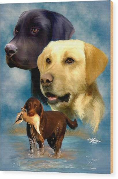 Labrador Retrievers Wood Print