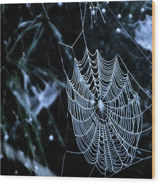Lacework Wood Print by Lyle  Huisken