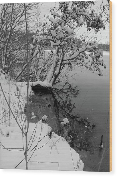 Laden With Winter Wood Print