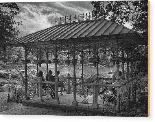 Ladies Pavilion By Moonlight Wood Print