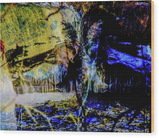 Lady At The Beach Through The Frozen Falls Wood Print