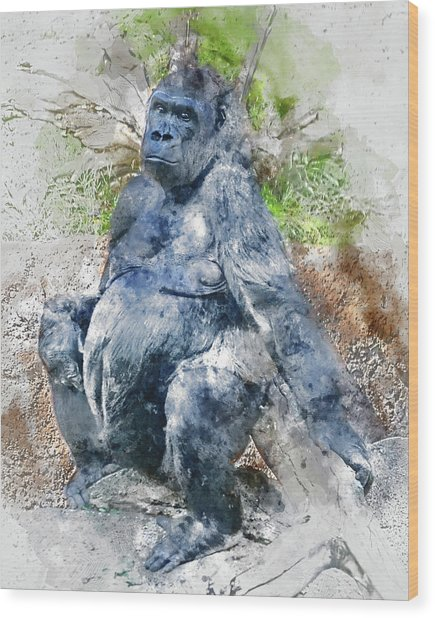 Lady Gorilla Sitting Deep In Thought Wood Print