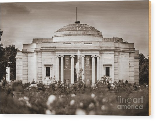 Lady Lever Art Gallery Wood Print
