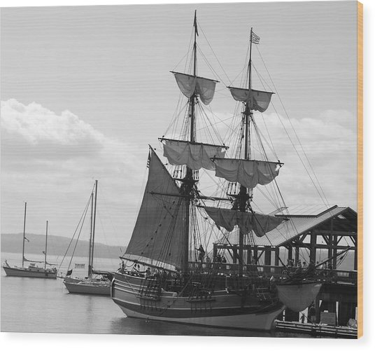 Lady Washington Wood Print by Sonja Anderson