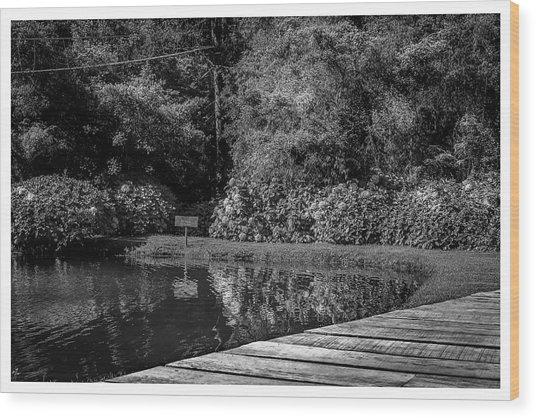 Lago-horto-parque Estadual-campos Do Jordao-sp Wood Print