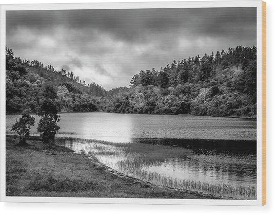 Lagoa Do Itapeva-pindamonhangaba-sp Wood Print