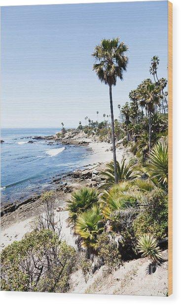 Laguna Beach California Heisler Park Wood Print by Paul Velgos