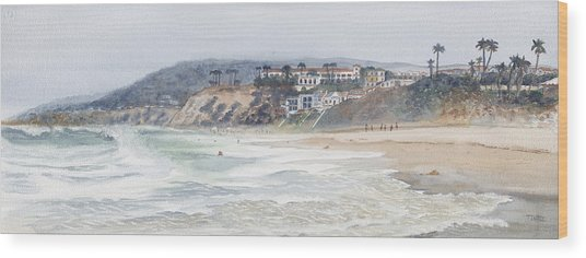 Salt Creek Beach Wood Print by Tom Dorsz