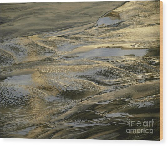 Lajollagold Wood Print