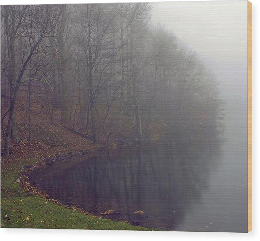 Lake Abbott Fog Wood Print