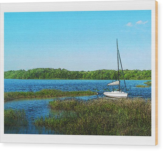 Lake At Hamony Fl Wood Print by Deborah Hildinger