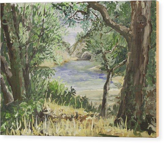 Lake At St Remy Wood Print by Gerold Kalter