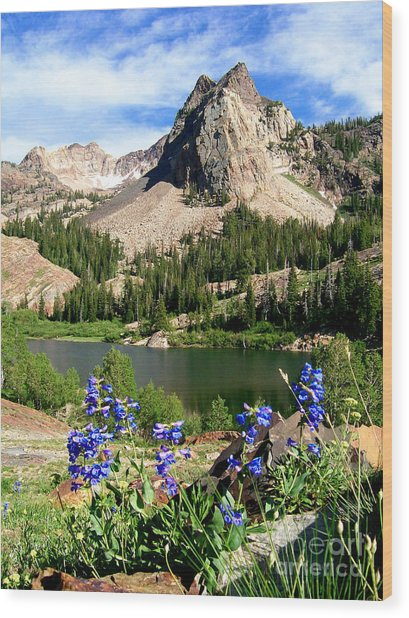 Lake Blanche And Sundial Peak Wood Print