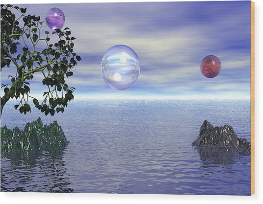 Lake Bubble Planet Wood Print
