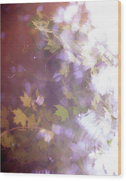 Lake Capture2 Wood Print by Lacey Renae