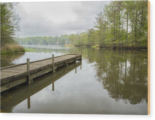 Lake Chicot 01 Wood Print