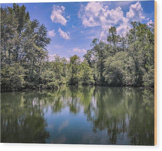Lake Cove Wood Print