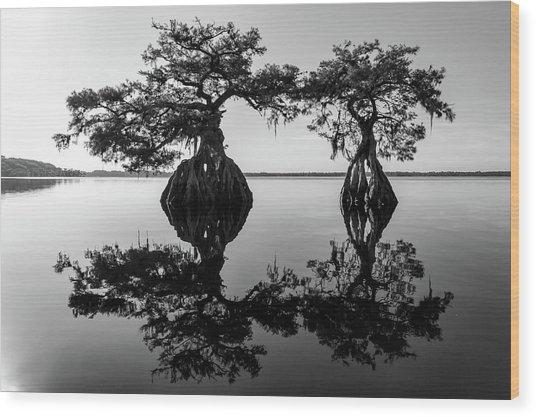 Lake Disston Old Couple Wood Print