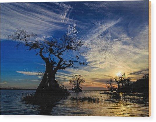 Lake Disston Sunset Wood Print