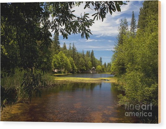 Lake Fulmor View Wood Print