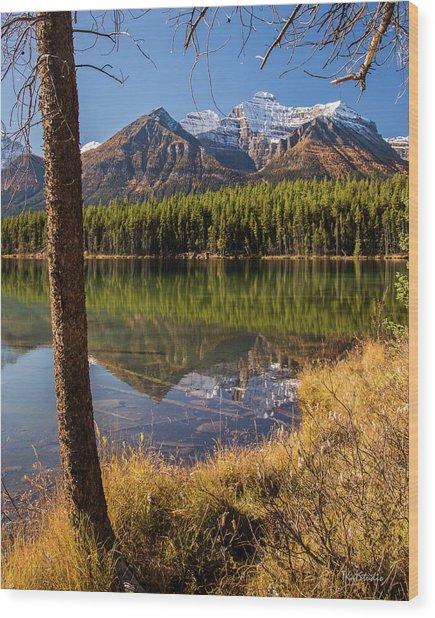 Lake Herbert Reflections Wood Print