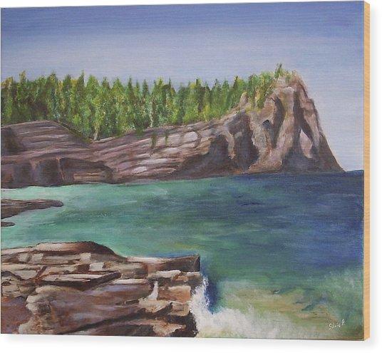 Lake Huron Wood Print by Silvia Philippsohn