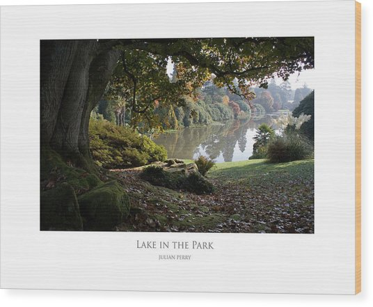 Lake In The Park Wood Print
