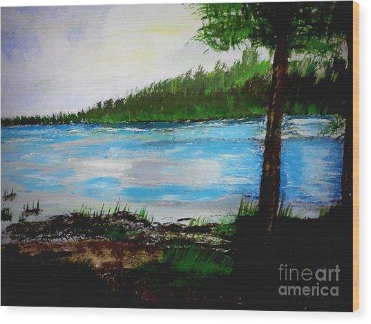 Lake In Virginia The Painting Wood Print