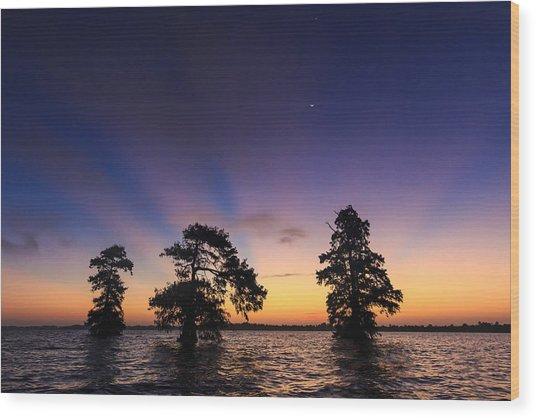 Lake Istokpoga Sunrise Wood Print