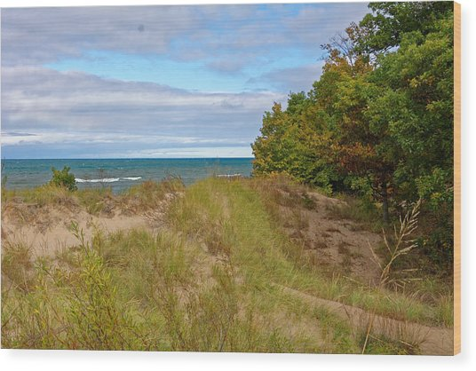 Lake Michigan Shore Wood Print