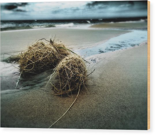 Lake Michigan Tumbleweed Wood Print