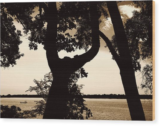 Lake Minnesota Wood Print