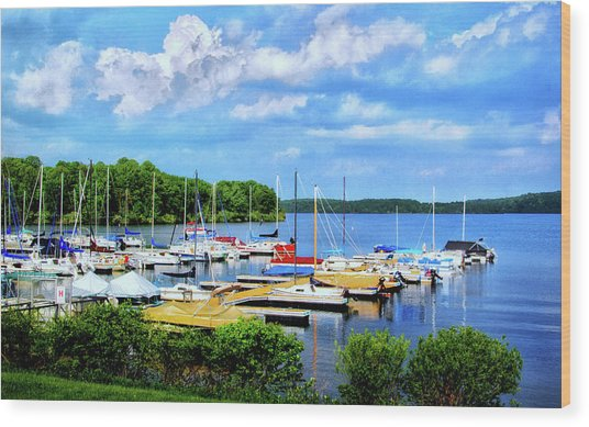 Lake Nockamixon Marina Wood Print