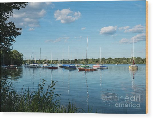 Lake Nokomis Minneapolis City Of Lakes Wood Print
