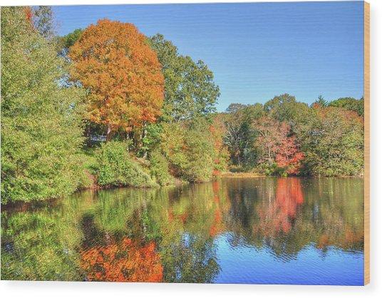Lake Noquochoke, Dartmouth, Ma Wood Print