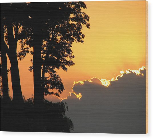Lake Ontario Sunset Wood Print by Helaine Cummins