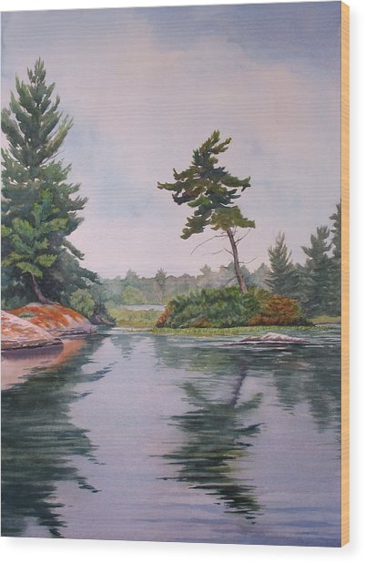 Lake Reflection Wood Print by Debbie Homewood