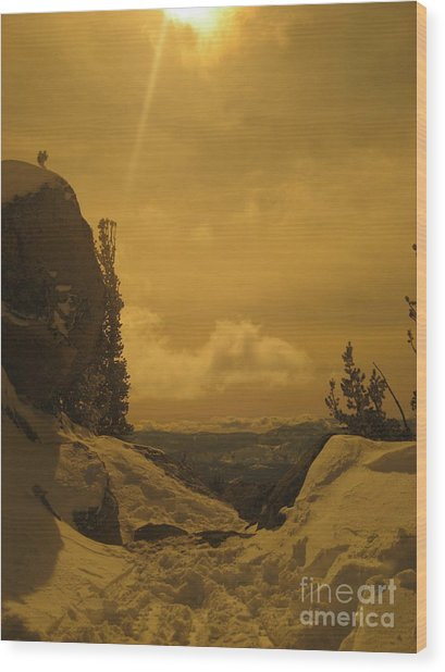 Lake Tahoe  Wood Print by Paula Deutz