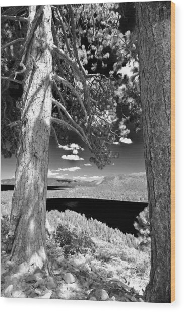Wood Print featuring the photograph Lake Tahoe by Sherri Meyer